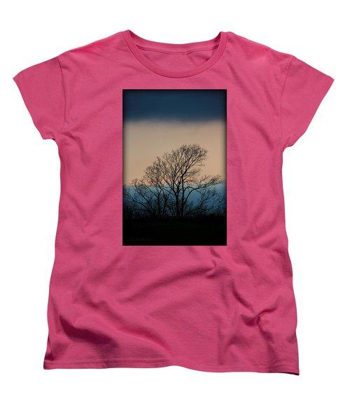Women's T-Shirt (Standard Cut) featuring the photograph Blue Dusk by Chris Berry