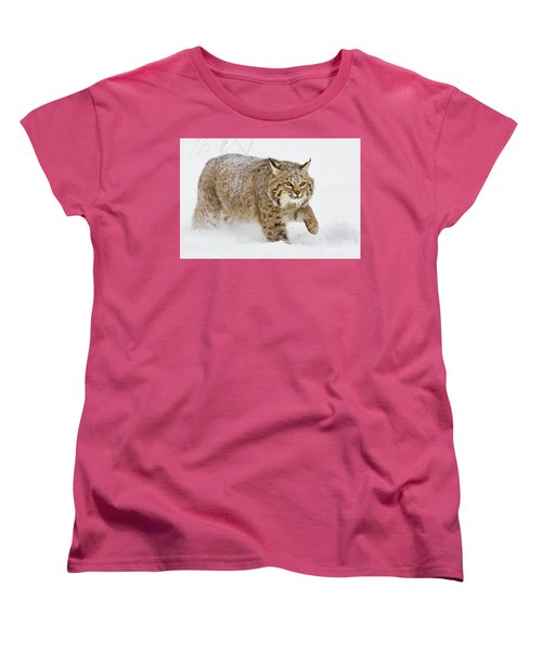 Bobcat In Snow Women's T-Shirt (Standard Cut) by Jerry Fornarotto