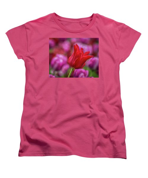 Women's T-Shirt (Standard Cut) featuring the photograph Brazenly Delicate by Bill Pevlor