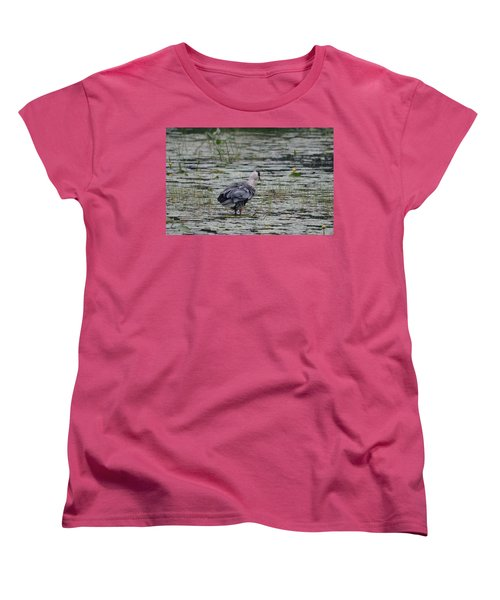 Breezy Blue- Great Blue Heron Women's T-Shirt (Standard Cut) by David Porteus