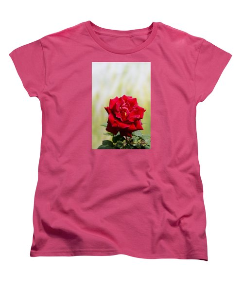 Bright Red Rose Women's T-Shirt (Standard Cut) by Perry Van Munster