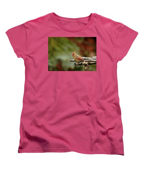 Women's T-Shirt (Standard Cut) featuring the photograph Building A Home by Debbie Oppermann