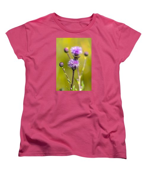 Women's T-Shirt (Standard Cut) featuring the photograph Bumblebee Aug 2015 by Leif Sohlman