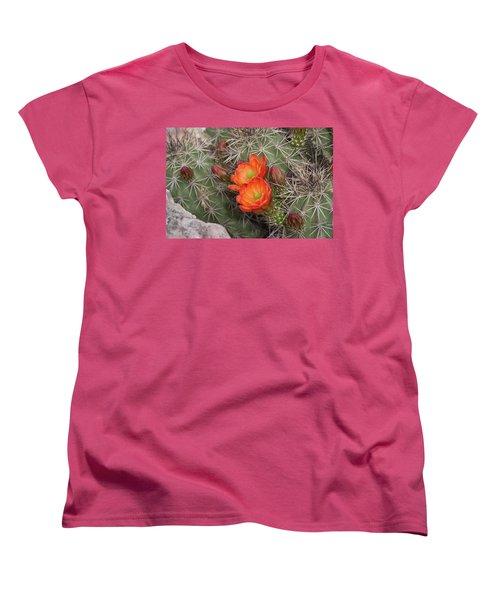 Cactus Blossoms Women's T-Shirt (Standard Cut) by Monte Stevens