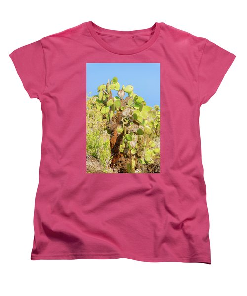Cactus Trees In Galapagos Islands Women's T-Shirt (Standard Cut) by Marek Poplawski