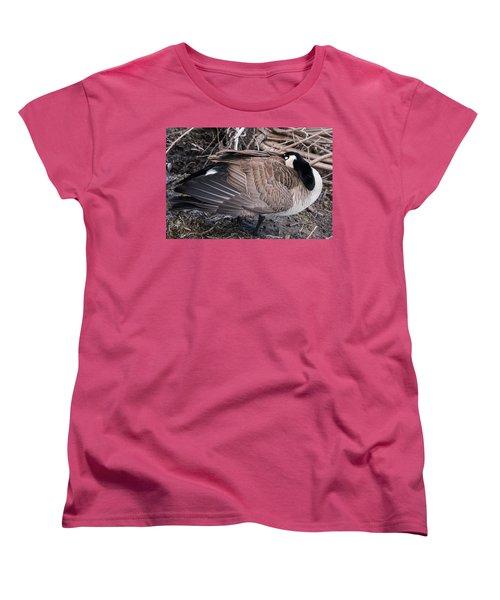 Canada Goose Asleep Women's T-Shirt (Standard Cut) by Edward Peterson