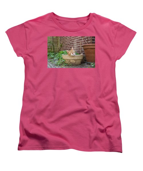 Women's T-Shirt (Standard Cut) featuring the photograph Cat In Empty Pot by Patricia Hofmeester