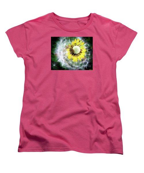 Celebration Of Nature Women's T-Shirt (Standard Cut)