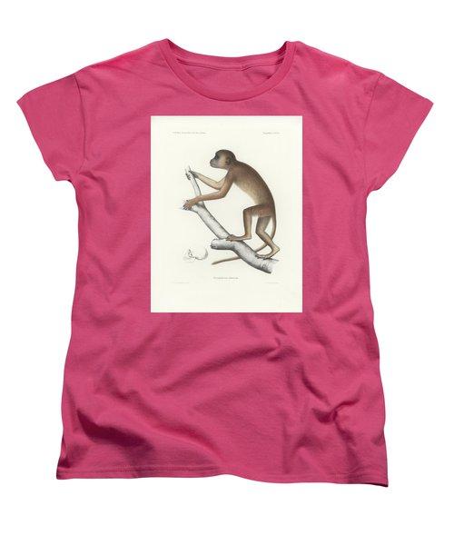 Central Yellow Baboon, Papio C. Cynocephalus Women's T-Shirt (Standard Cut) by J D L Franz Wagner