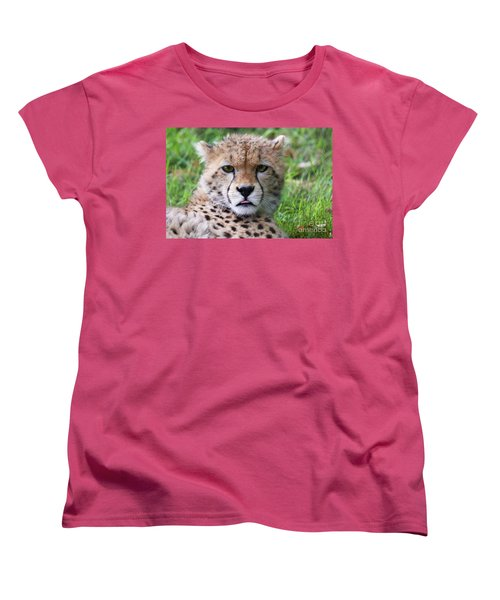 Women's T-Shirt (Standard Cut) featuring the photograph Cheetah by MGL Meiklejohn Graphics Licensing