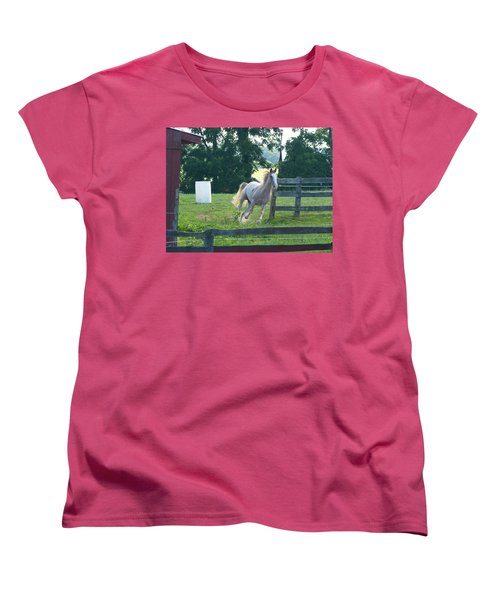 Chester On The Run Women's T-Shirt (Standard Cut) by Donald C Morgan