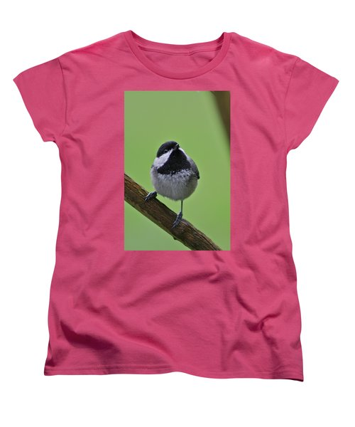 Women's T-Shirt (Standard Cut) featuring the photograph Chic A Ddd by Cathie Douglas