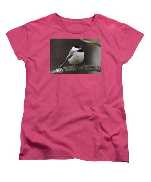 Chickadee Women's T-Shirt (Standard Cut) by Diane Giurco