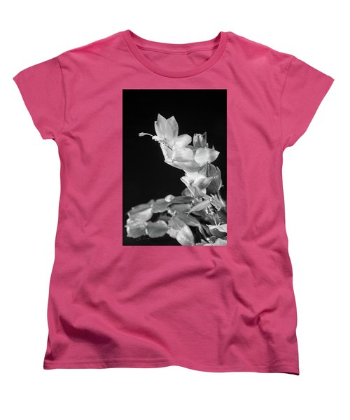 Christmas Cactus On Black Women's T-Shirt (Standard Cut) by Ed Cilley