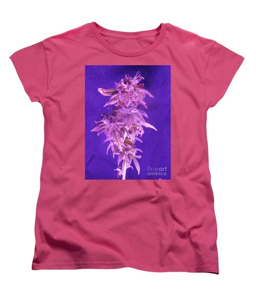 Colorado Rocksy Women's T-Shirt (Standard Cut) by Kelly Awad