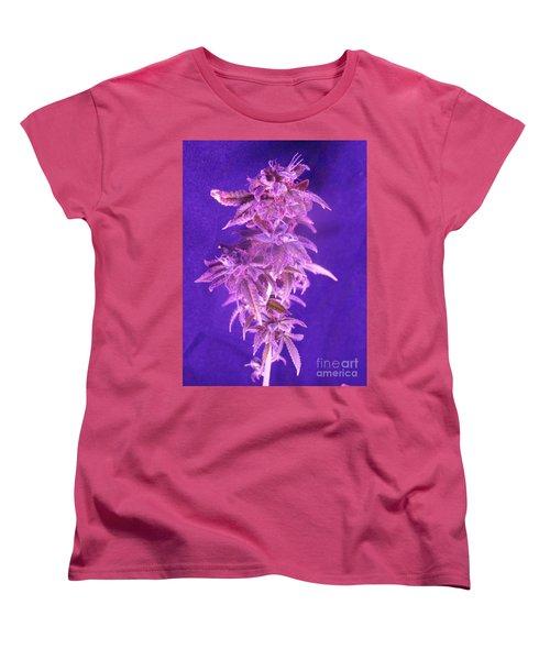 Colorado Rocksy Women's T-Shirt (Standard Cut)