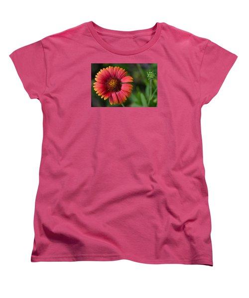 Colorful Indian Blanket Women's T-Shirt (Standard Cut) by Kenneth Albin