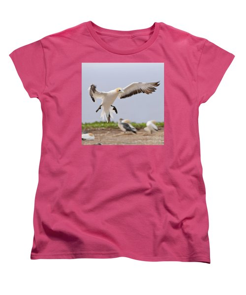 Coming In To Land Women's T-Shirt (Standard Cut) by Werner Padarin
