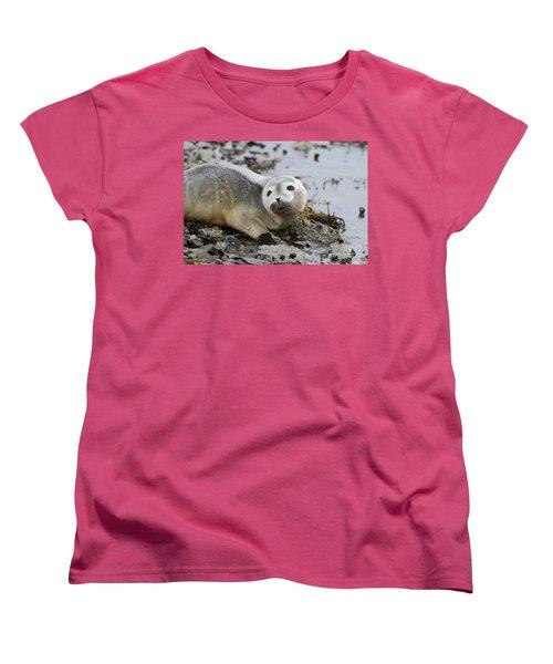 Curious Harbor Seal Pup Women's T-Shirt (Standard Cut) by DejaVu Designs