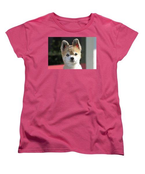 Cute Stare Down Women's T-Shirt (Standard Cut) by Shoal Hollingsworth