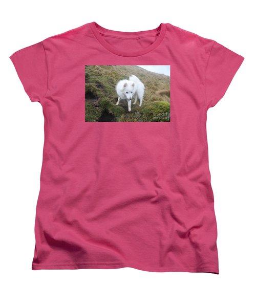 Daisy - Japanees Spits Women's T-Shirt (Standard Cut) by David Grant