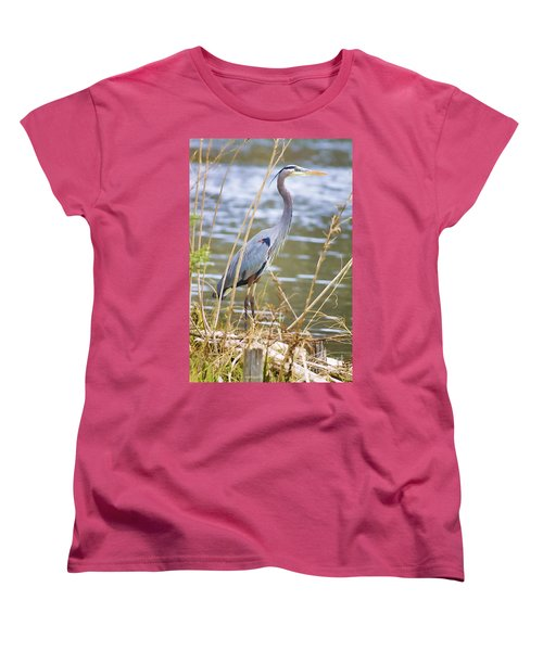 De Leon Springs Blue Women's T-Shirt (Standard Cut) by Deborah Benoit