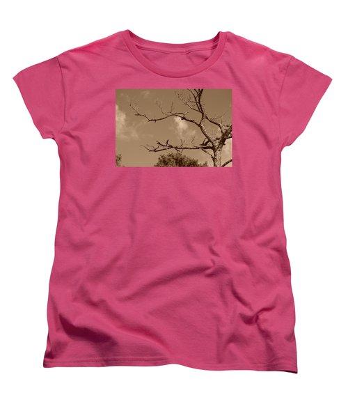 Women's T-Shirt (Standard Cut) featuring the photograph Dead Wood by Rob Hans
