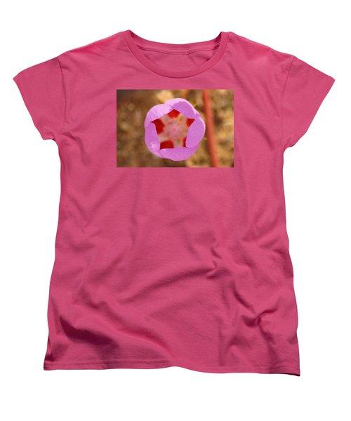 Death Valley Superbloom 402 Women's T-Shirt (Standard Cut) by Daniel Woodrum