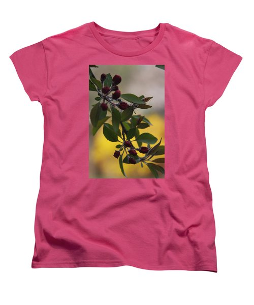 Delicate Crabapple Blossoms Women's T-Shirt (Standard Cut) by Vadim Levin