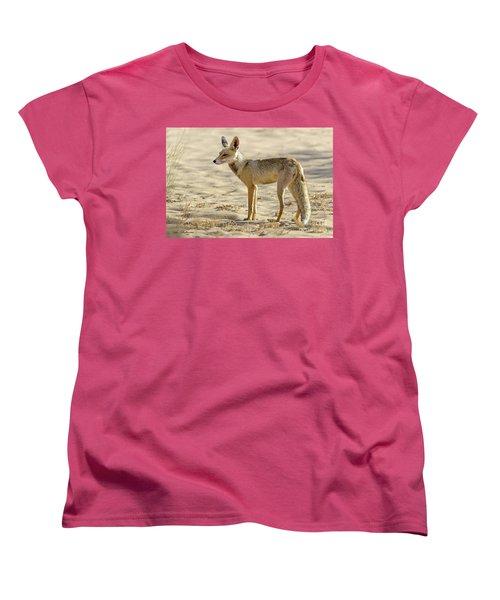 desert Fox 02 Women's T-Shirt (Standard Cut) by Arik Baltinester