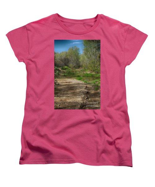 Desert Oasis Women's T-Shirt (Standard Cut) by Anne Rodkin