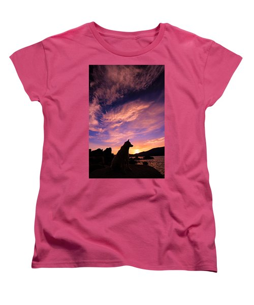 Dogs Dream Too Women's T-Shirt (Standard Cut) by Sean Sarsfield