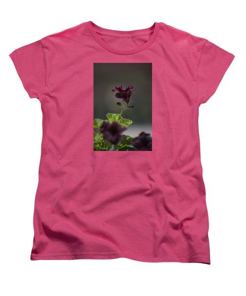 Dying Embers Women's T-Shirt (Standard Cut) by Morris  McClung