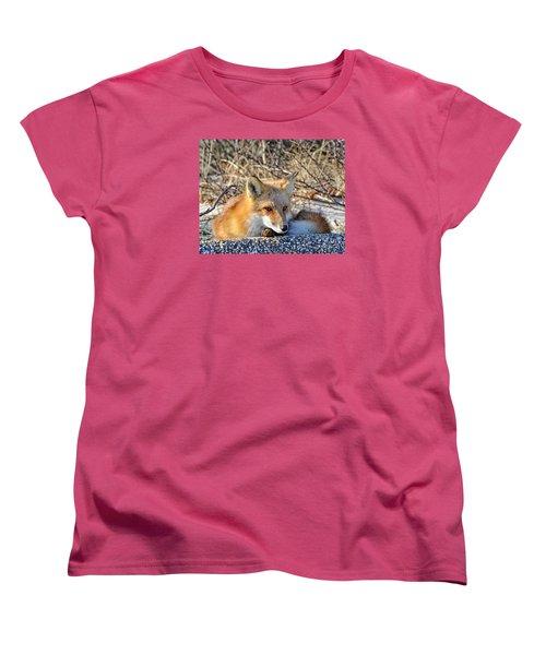 Women's T-Shirt (Standard Cut) featuring the photograph Enjoying The Sun by Sami Martin
