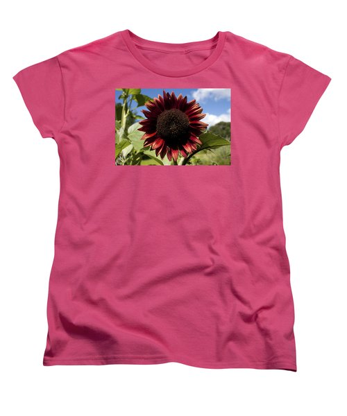 Evening Sun Sunflower #2 Women's T-Shirt (Standard Cut) by Jeff Severson