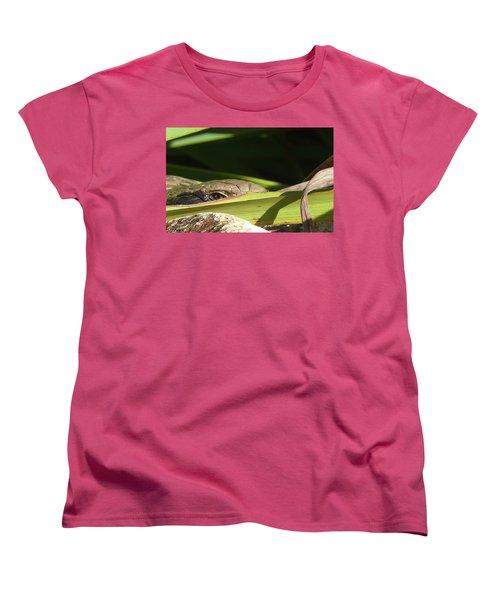 Eye Contact Women's T-Shirt (Standard Cut) by Evelyn Tambour