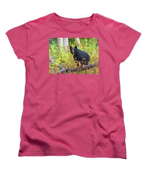 Fall Bear Women's T-Shirt (Standard Cut) by Scott Warner