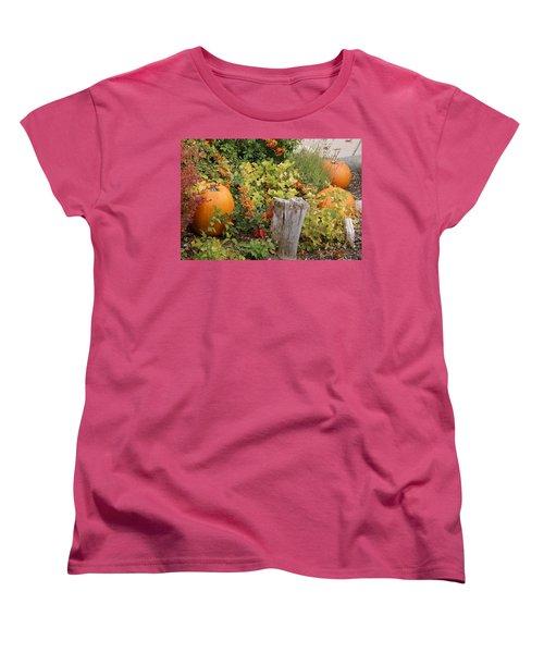Fall Garden Women's T-Shirt (Standard Cut) by Cynthia Powell