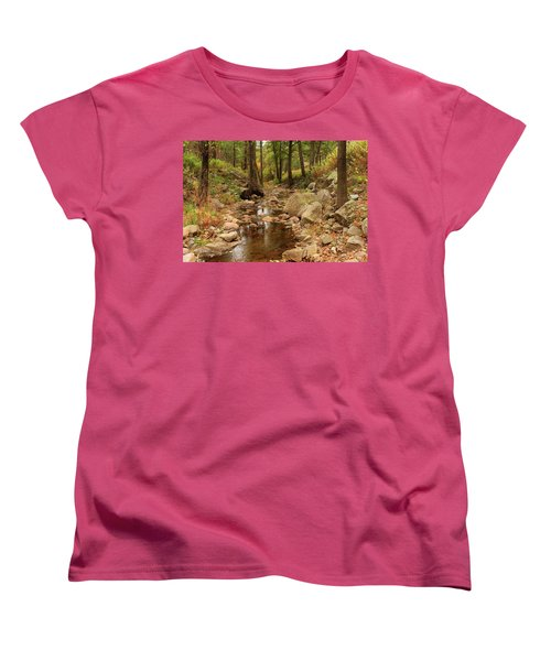 Fall Stream And Rocks Women's T-Shirt (Standard Cut) by Roena King