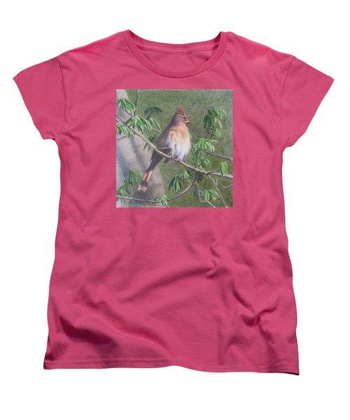 Female Cardinal Women's T-Shirt (Standard Cut)