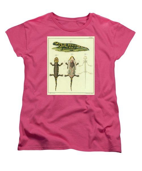 Women's T-Shirt (Standard Cut) featuring the drawing Fire Salamander Anatomy by Christian Leopold Mueller