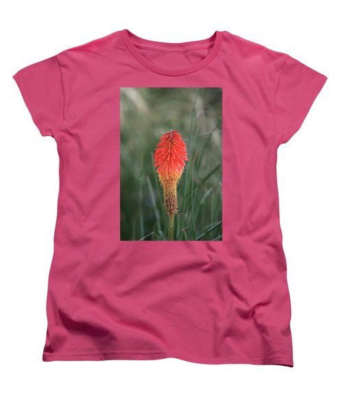 Women's T-Shirt (Standard Cut) featuring the photograph Firecracker by David Chandler