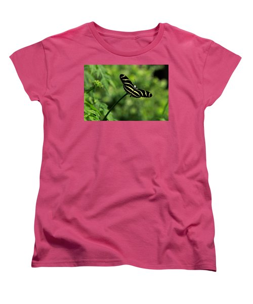 Florida State Butterfly Women's T-Shirt (Standard Cut) by Greg Allore