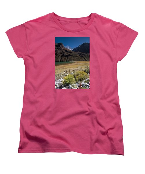 Flowers And Mountain Lake In Santa Cruz Valley Women's T-Shirt (Standard Cut) by Aivar Mikko