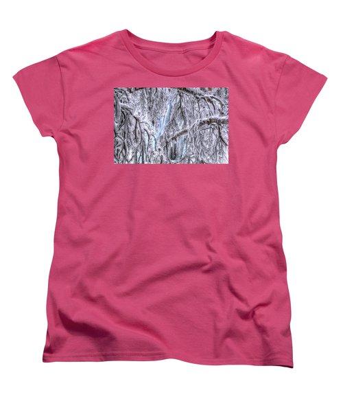 Frozen Falls Women's T-Shirt (Standard Cut) by Fiskr Larsen