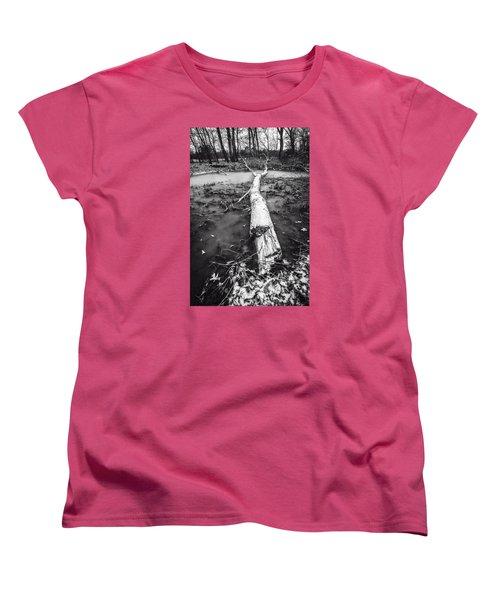 Frozen Landscape Women's T-Shirt (Standard Cut)