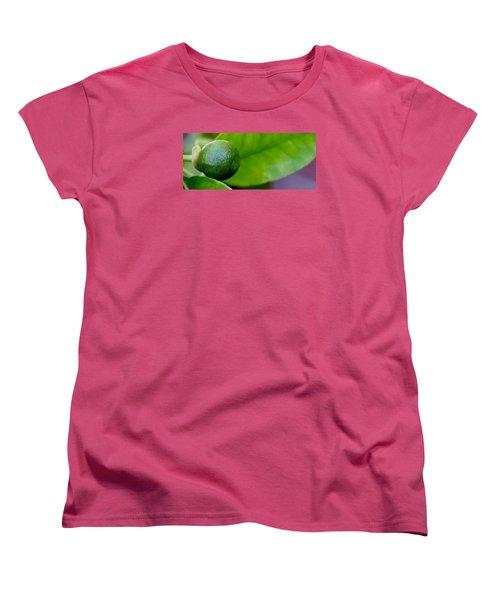 Gapefruit Women's T-Shirt (Standard Cut) by Werner Lehmann