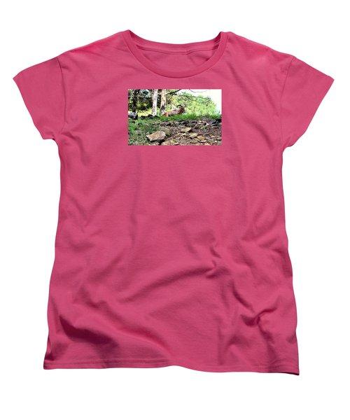 Georgia Mountain Goat At Rest Women's T-Shirt (Standard Cut) by James Potts