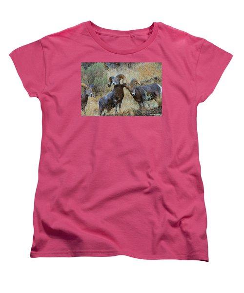 Got An Itch... Women's T-Shirt (Standard Cut) by Steve Warnstaff