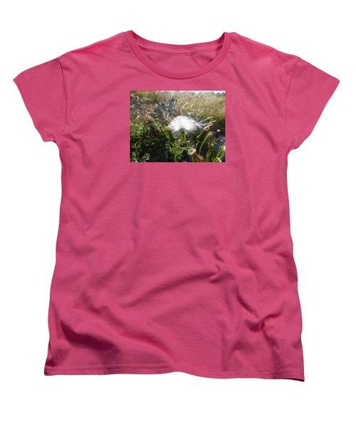 Women's T-Shirt (Standard Cut) featuring the photograph Grand Manan Dandelion  by Joel Deutsch